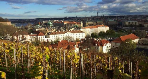 Uitzicht over Praag. Foto: Laura Postma